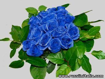 Синие розы. Изображение с сайта openok-24.ru